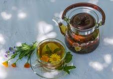 Kräutertee in der Teekanne und in der Schale Lizenzfreies Stockfoto