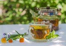Kräutertee in der Teekanne und in der Schale Stockbild