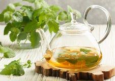 Kräutertee in einer transparenten Teekanne auf dem Tisch und in den Zweigen frischer Melissa-Melisse und -minze stockfotografie