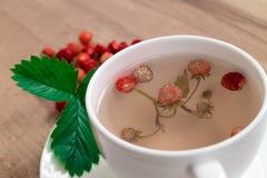 Kräutertee mit Beeren und Blättern von Walderdbeeren Eine Tasse Tee mit Waldbeeren Lizenzfreies Stockbild