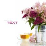 Kräutertee und Blumen Stockfotos