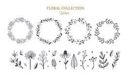 Kräutertee und Blumengekritzelsatz Gezeichnete botanische Illustration des Vektors Hand stock abbildung