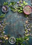 Kräuterteehintergrund mit verschiedenen frischen heilenden Kräutern und Blumen, Sieb und Tasse Tee, Draufsicht stockfotos