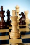 król szachowy Obraz Stock