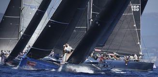 Królewiątko filiżanki żeglowania regatta w palmie de Mallorca zdjęcie royalty free
