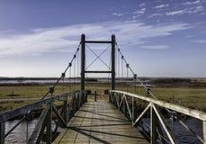Królewiątko Hans bridżowy pobliski Skjern, Dani Fotografia Stock