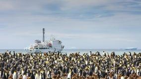Królewiątko penguing kolonia w Południowym Gruzja zdjęcia royalty free