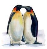 Królewiątko pingwiny ilustracja wektor