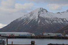 Królewiątko zatoczka Alaska Fotografia Stock
