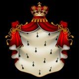 Królewska gronostajowa salopa Fotografia Royalty Free