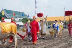 Królewska oranie ceremonia w Tajlandia Obrazy Stock