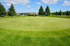 Królewski Bromont kij golfowy Obrazy Royalty Free