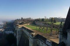 Królewski Château Amboise Obrazy Royalty Free