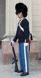 królewski duński gwardzista Zdjęcia Royalty Free