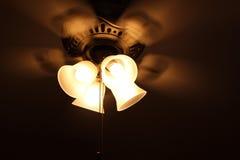 Królewski fan z 4 światłami i cztery skrzydłami Zdjęcia Stock