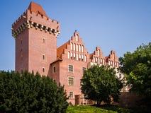 Królewski kasztel w Poznańskim Zdjęcia Royalty Free