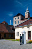 królewski strażowy pałac Obraz Royalty Free
