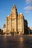 Królewski Wątrobowy budynek, molo głowa, Liverpool Zdjęcie Royalty Free