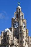 Królewski Wątrobowy budynek w Liverpool obraz stock