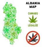 Królewskości Bezpłatna marihuana Opuszcza kolażu Albania mapę ilustracji