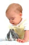 królik chłopca Zdjęcie Royalty Free