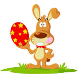 królik Easter Fotografia Royalty Free