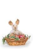 królik Easter odizolowywający Fotografia Royalty Free