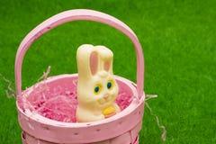 królik koszykowy Wielkanoc Zdjęcia Stock