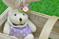 królik koszykowy Wielkanoc Fotografia Royalty Free