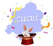 Królik Magicznej sztuczki cyrk Zdjęcie Stock
