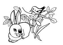 Królik, Uncolored kolorystyki strony ilustracja dla dzieci Zdjęcie Royalty Free