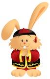 królika chińczyk Zdjęcia Stock
