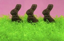 królika Easter czekoladowy tercet zdjęcia royalty free