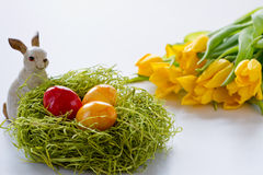 królika Easter jajek ester malujący Fotografia Royalty Free