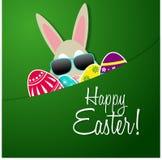 królika karciany Easter powitanie Obraz Royalty Free