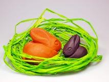 króliki Easter Obrazy Stock