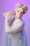 królowa śnieg Fotografia Royalty Free