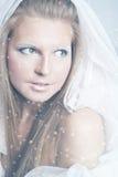 królowa śnieg Obrazy Stock