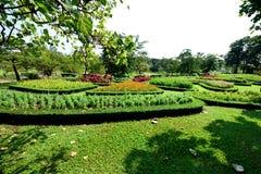 Królowa ogród fotografia stock