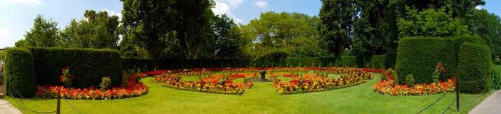 Królowej Marys ogródy różani zdjęcie stock