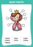 Królowej słownictwa część ciało, Pisze poprawnych liczbach części ciałe ilustracji