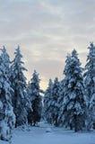 Krótki czas światło dzienne w Północnym Finlandia w Bożenarodzeniowym czasie niebieska godzinę zdjęcia stock