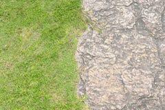 Krótki trawa gazon i bezszwowa rockowa tekstura Zdjęcia Royalty Free
