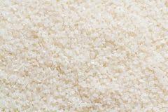 Krótki Zbożowy Rice Fotografia Stock