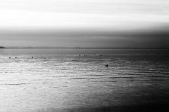 Krótkopęd półmrok przy jeziorem obraz stock