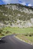 Krökning på den öppna vägen i den Grazalema nationalparken Arkivfoton