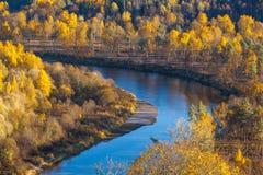 Krökt flod i höstskogen royaltyfri fotografi