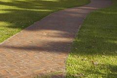 Krökt gångbana för röd tegelsten med grönt gräs Arkivbilder