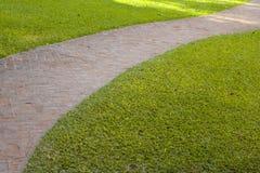 Krökt gångbana för röd tegelsten med grönt gräs Royaltyfri Fotografi