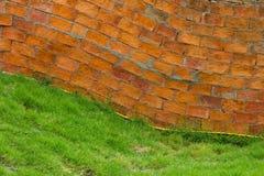 Krökt gräs för tegelstenvägg Arkivfoton